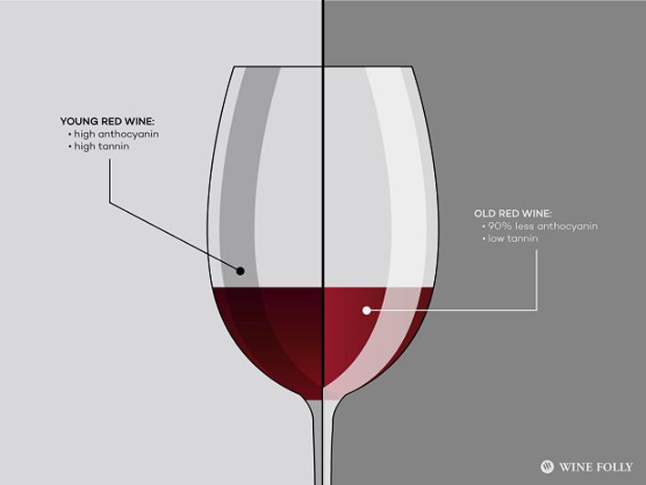 Rượu vang đỏ trẻ có thể tốt hơn so với rượu vang đỏ, niên vụ nhất định và được để lâu năm. Một nghiên cứu gần đây đã chỉ ra rằng 90% những chất chống oxy hóa (antioxidant) trong rượu vang đỏ bị mất đi trong quá trình ủ rượu. Một trong những lý do […]