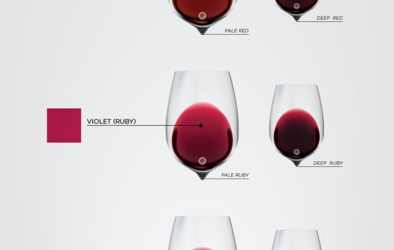Chỉ qua quan sát ly rượu vang và kinh nghiệm của bản thân, ta có thể biết được nhiều điều về rượu vang thông qua màu sắc của chúng. Đối vớirượu vang đỏ, sức hấp dẫn của rượu vang trước hết đến từ màu sắc của rượu. Rượu vang làm từ các giống nho khác […]
